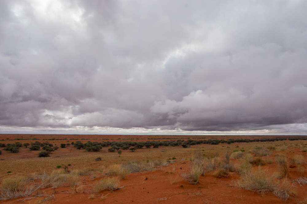 Rainclouds over the sandhills and gidgee swales. Photo: David Nelson