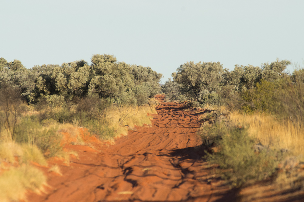 Shot Line Road. Photo: David Nelson