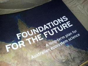 Foundations for the Future. Photo: Glenda Wardle