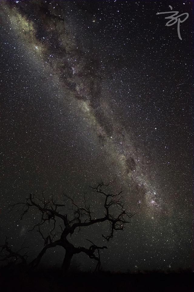 Starscape. Photo: Enyi Guo