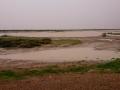 Floods near Boulia. Photo: David Nelson