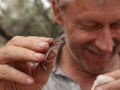 Chris with a Fat-tailed Gecko, <I>Diplodactylus conspicillatus</I>. Photo: Jess Lawton