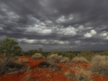 Storm over the dune. Photo: Kristina Koenig