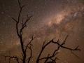 Milky way. Photo: David Nelson